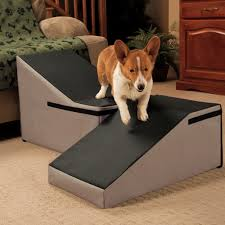 Pet Stairs For Tall Beds by Indoor Ramp Non Slip Dog Ramp Aids Older Pets And Dogs With Arthritis