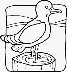 Segull On A Dock Fun Bird Coloring Pages