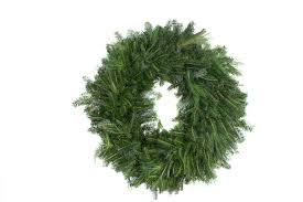 Fraser Christmas Tree Care by Hart T Tree Farms Wholesale
