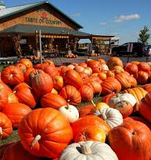 Pumpkin Patch Caledonia Il For Sale by Basse U0027s Taste Of Country We Grow Memories Colgate Wi