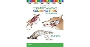 Veterinary Anatomy Coloring Book Baljit PhD Singh Amazonmx Libros
