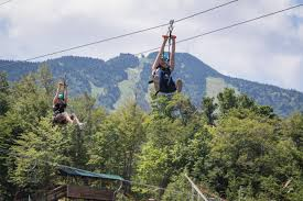 Killington Adventure Center Discount Code Hs Hardware Coupon ... Promo Code Walmart Com Kaleidoscope Kreator 3 Coupon Rabbit Air Discount China Cook Coupons Newchic Discount Code 15 Off April 2019 Australia 20 From Newchic Discounts Point Coupon New Look Lamps Plus Promo Ppt Reecoupons Werpoint Presentation Id7576332 Best Verified Codes And Deals For Online Stores Top Savings Deals Blogs Verified Inmed Jul2019 Pacific Science Center Pompeii Baby Bunting 9 Newchic Online Coupons Codes Sep Honey