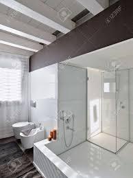 große badewanne und duschkabine aus glas in einem modernen badezimmer mit holzdecke