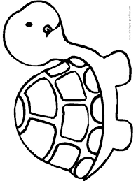 Turtle Coloring Pages Color Plate Sheetprintable Picture