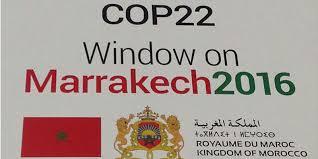 bureau d etude marrakech cop22 deux bureaux d études pour l assistance à maîtrise d
