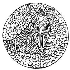Mandala Zèbre Normal Mandalas Sur Le Thème Des Animaux
