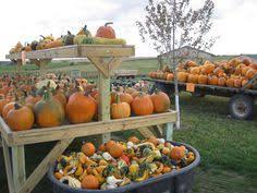 Pumpkin Patch Kiln Mississippi by Fall Fun In Decorah Ia At Pinter U0027s Gardens And Pumpkins Www