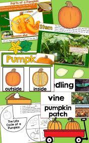 Life Cycle Of A Pumpkin Seed Worksheet by 138 Best Pumpkins Images On Pinterest Fall Preschool Halloween