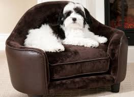 Wayfair Dog Beds by Furniture Style Dog Beds Wayfair All About Sofa And Other Home