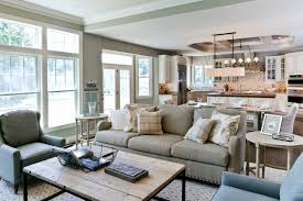 Transitional Living Room Sofa by Apartments Area Rug With Blue Sofa And Gray Sofa And Decorative