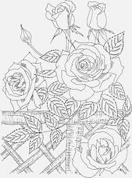 Top Nature Coloring Pages Cool Ideas