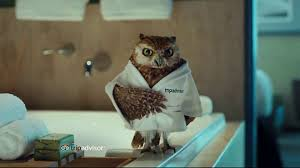 Trip Advisor TV Commercial The Fresher Things