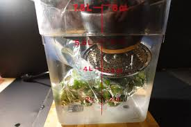 Bad Eggs Do They Float Or Sink by Simple Fixes For Floating Bags Anova Sous Vide Hacks
