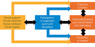 Conceptual Model Of The Relationships Between Participation In Organized Sport And Recreation