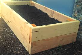 Top 2 Designs for Easy to Build Juniper Raised Beds