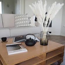 pasgras natürliche pasgras phragmites trockenblumen blumenstrauß als deko für schlafzimmer hochzeit 15pcs