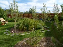 Education - Paradise Permaculture Thriving Backyard Food Forest 5th Year Suburban Permaculture Bill Mollison Father Of Gaenerd 101 Pri Cold Climate Archives Chickweed Patch Garden Design With Permaculture Kitchen Herb Spiral Backyard Orchard For The Yards Pinterest Orchards Australian House Garden January 2017 Archology Download Design And Ideas Gurdjieffouspenskycom Sustainable Farm Future Best 25 Ideas On Vegetable Youtube