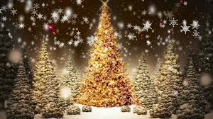 Hobby Lobby Pre Lit Led Christmas Trees by Christmas Christmas Trees Decorated With Mesh Ribbonchristmas