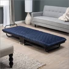 Rollaway Bed Big Lots by General Bully Buster