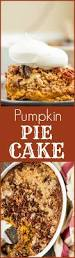 Crustless Pumpkin Pie Slow Cooker by 339 Best All Things Fall Images On Pinterest