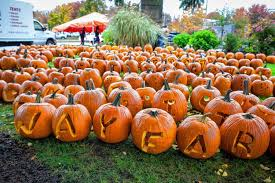 Nh Pumpkin Festival Riot by When It Comes To Pumpkins Keene U0027s Loss Turns Out To Be Laconia U0027s Gain