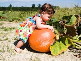 Pumpkin Patch Durham North Carolina by Weekend Fun 10 Things To Do With Kids In Raleigh Durham And Cary