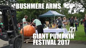 Atlantic Giant Pumpkin Record by Bushmere Arms Giant Pumpkin Festival 2017 Youtube