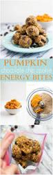 Weight Watchers Crustless Pumpkin Pie With Bisquick by Best 25 Healthy Pumpkin Cookies Ideas On Pinterest Gluten Free