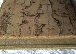 Cork Flooring In Bathroom Plank Pros And Cons