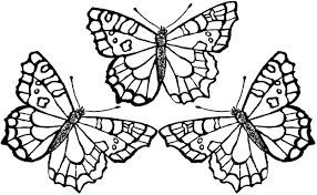 Free Coloring Pages Butterflies And Flowers Of Hearts Butterfly Full Size