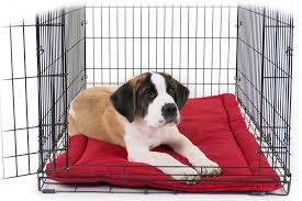 Unchewable Dog Bed by Tuff Crate Pad Chew Proof Dog Beds
