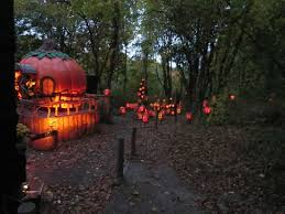 Roger Williams Pumpkin by Pumpkins Picture Of Roger Williams Park Zoo Providence
