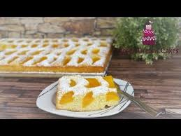 pfirsich blechkuchen blitzkuchen einfach schnell lecker