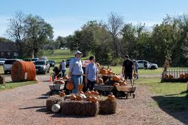 Pumpkin Patches In Okc by Tg Farms In Norman Photos U2013 Uncovering Oklahoma