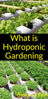 What is Hydroponic Gardening