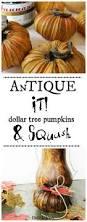 Artificial Carvable Pumpkins by Best 25 Dollar Tree Pumpkins Ideas Only On Pinterest Dollar