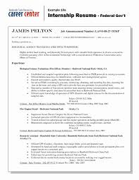 Resume For Federal Government Jobs Free Sample Job