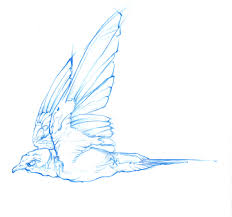 Barn Swallow Pencil Sketch By Melangle On Newgrounds Pencil Drawing Of Old Barn And Silo Stock Photography Image Sketches Barns Images The Best Red Store Opens Again For Season Oak Hill Farmer Gallery Of Manson Skb Architects 26 Owl Sketch By Mostlyharmful On Deviantart Sketch Cliparts Zone Pen Drawings Old Barns Acrylic Yahoo Search Results 15 Original Hand Drawn Farm Collection Vector Westside Rd Urban Sketchers North Bay Top 10 For Design Sketches Ralph Parker Artist