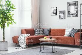 große grüne pflanze kleine runde couchtisch und ecksofa in elegantem wohnzimmerinterieur stockfoto und mehr bilder aufgeräumter raum