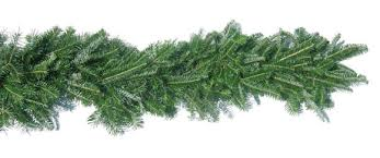 Fraser Fir Christmas Trees Nc by Christmas Tree Farms In North Carolina Christmas Garland And Wreaths