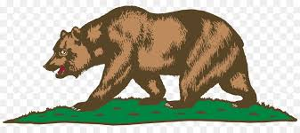 California Republic Grizzly Bear Flag Of