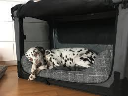 mit der ruhezone zu mehr entspannung für deinen hund