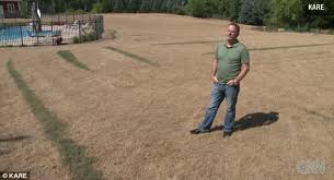 Minnesota Man Rob Olson Managed To Kill All The Grass On His 40000 Square Foot Lawn