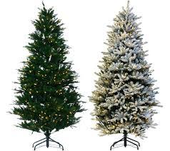 Qvc Christmas Tree Recall by Santa U0027s Best Balsam Fir Christmas Tree With Rgb 2 0 Technology