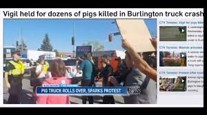 Vigil Held For Dozens Of Pigs Killed In Burlington Truck Crash - YouTube 1979 Chevy Silverado K20 Gmc Pickup Frontal Crash Test By Nhtsa Coke Truck Accident Youtube Caught On Video Semi Goes Airborne Erupts Into Fireball In Indiana Lego City 2017 Stunt Truck Lets Build 60146traffic Car Smashes Overpass Most Insane Crashes Compilation 8 Dash Cam Video Shows Horrific High Speed Crash Watch News Videos 2 Killed When Crashes Tree Along I80 Trucker Jukebox On I12 Louisiana 3 Rc Radio Control Bashing Hits Funny Accident In India Livestock I75