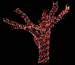 Christmas Light Installers Dallas