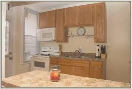 kitchen creative craigslist kitchen cabinets decoration ideas