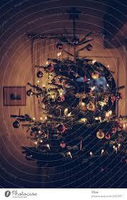 festlich geschmückter christbaum zu weihnachten im