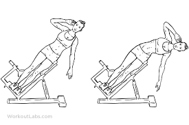 roman chair hyperextension bench side bends workoutlabs