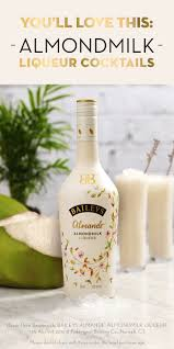 Pumpkin Spice Baileys Recipe by 42 Best Baileys Almande Images On Pinterest Liqueurs Cocktails